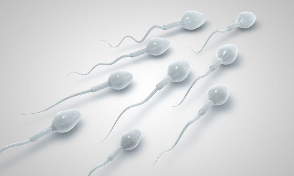 Fertility Tech for Men: Is It Worth It?